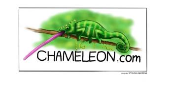Chameleon copy