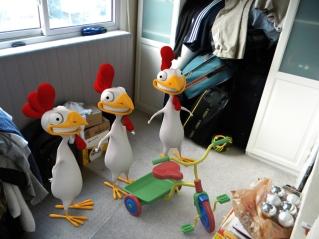 chicken_carlos in my room